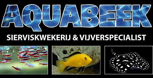 aquabeek2017_01